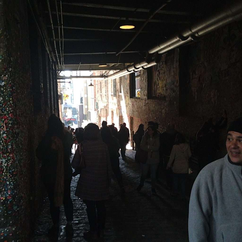 geoturtle-gum-wall