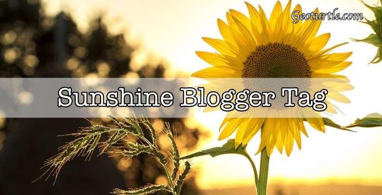 geoturtle sunshine blogger