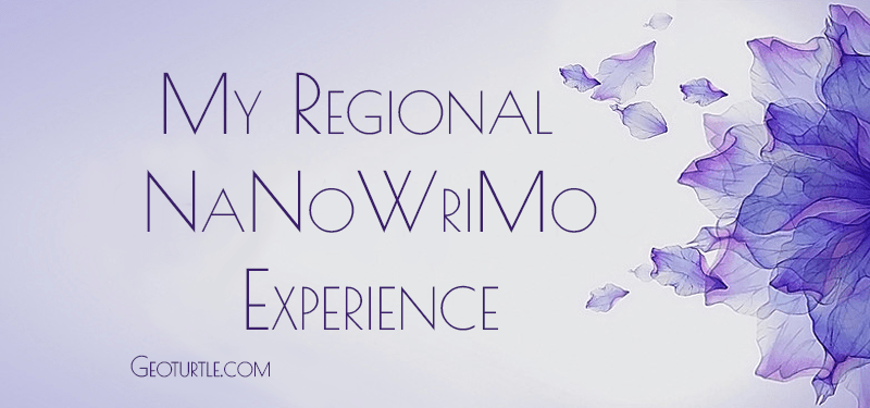my-regional-nanowrimo-experience-geoturtle