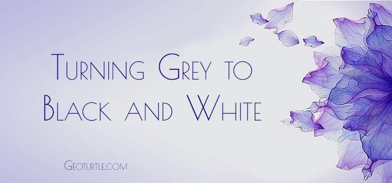 turning-grey-black-white-geoturtle