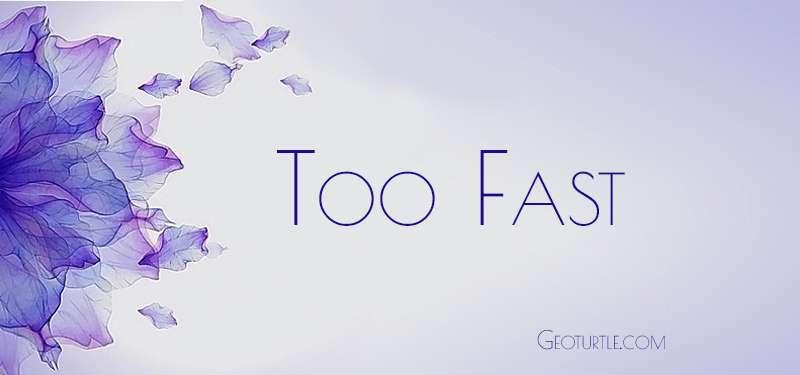 too-fast-geoturtle
